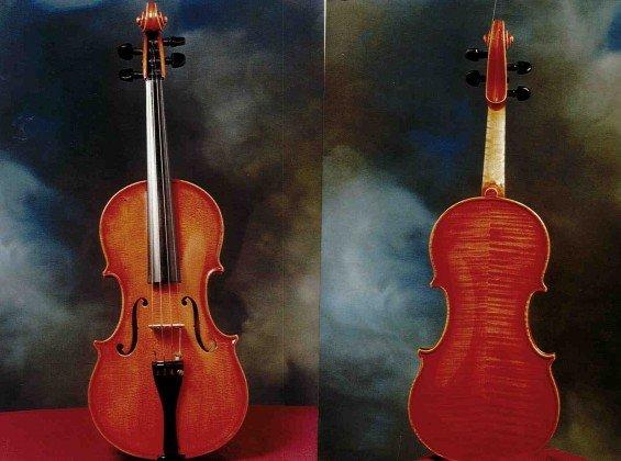 Violino Cavani